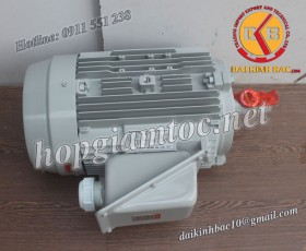Motor điện Toshiba chân đế 22kw 30Hp