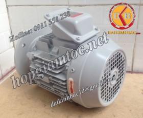 Motor điện Toshiba mặt bích 30kw