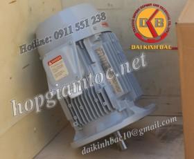 Motor điện Toshiba mặt bích 37kw