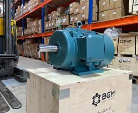 Motor điện YE2-100L-6 1.5kw