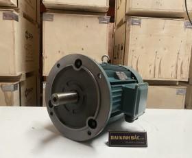 Motor điện YE2-112M-2 4kw 2 cực