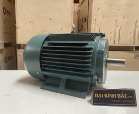 Motor điện YE2-112M-4 4Kw 4P