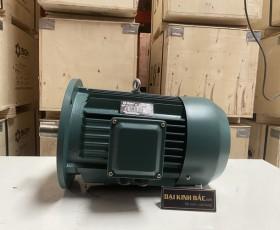 Motor điện YE2-132M-4 7.5Kw 10HP