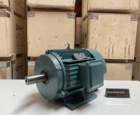 Motor điện YE2-132S1-2 5.5kw 2 cực