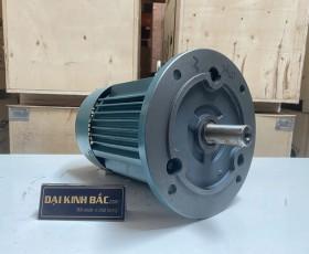 Motor điện YE2-132S2-2 7.5kw 2 cực