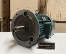 Motor điện YE2-132S-4 5.5kw 4P
