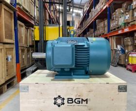 Motor điện YE2-160L-2 18.5kw 2 cực