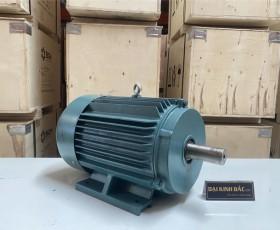 Motor điện YE2-160M-4 11Kw 4P