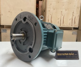 Motor điện YE2-801-2 0.75KW 2 cực