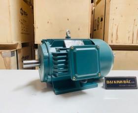 Motor điện YE2-802-6 0.55kw