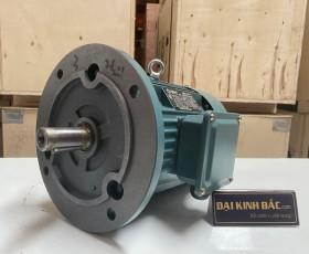 Motor điện YE2-90S-6 0.75kw