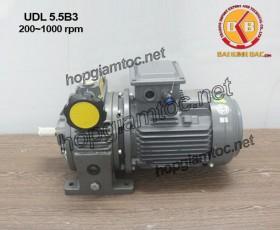 Motor điều tốc B3 UDL 5.5kw 200~1000