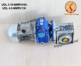 Motor điều tốc liền hộp số nmrv