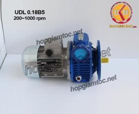 Motor điều tốc UDL B5 0.18kw 200~1000