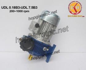 Motor điều tốc UDL Chan de B3