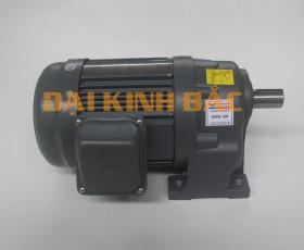 Motor giảm tốc 200W 0.25hp