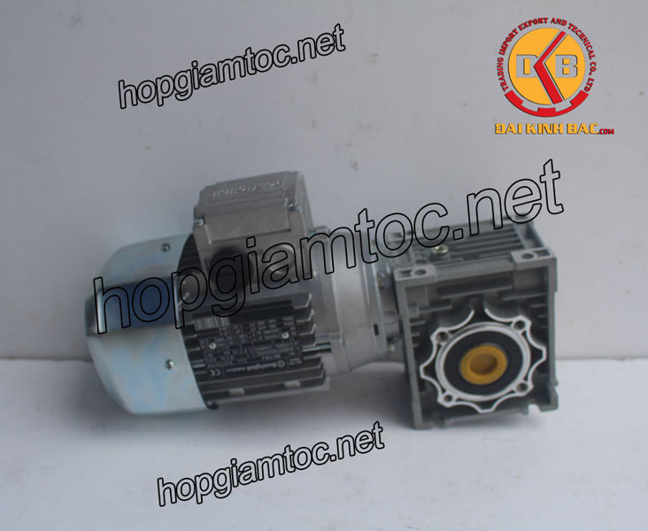 Motor giảm tốc cốt âm 0.18kw 1/4HP