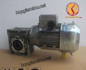 Motor giảm tốc cốt âm 0.25kw 1/100