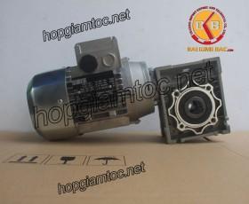 Motor giảm tốc cốt âm 0.25kw 1/40