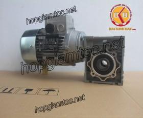 Motor giảm tốc cốt âm 0.25kw 1/5