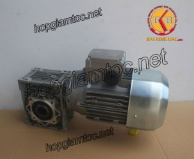 Motor giảm tốc cốt âm 0.25kw 1/50