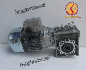 Motor giảm tốc cốt âm 0.25kw 1/60
