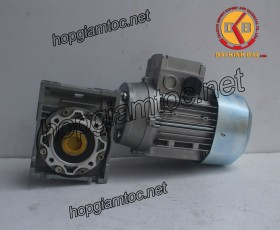 Motor giảm tốc cốt âm 0.25kw 1/7.5