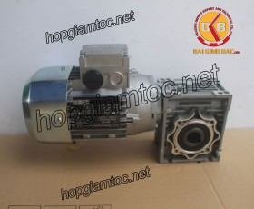 Motor giảm tốc cốt âm 0.37kw 1/40