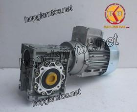 Motor giảm tốc cốt âm 0.55kw 1/15