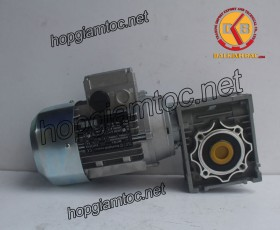 Motor giảm tốc cốt âm 0.55kw 1/20