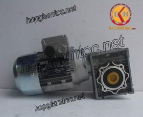 Motor giảm tốc cốt âm 0.55kw 1/25