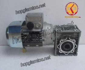 Motor giảm tốc cốt âm 0.55kw 1/40