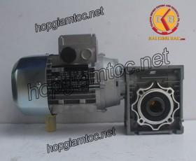 Motor giảm tốc cốt âm 0.55kw 1/50