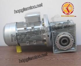 Motor giảm tốc cốt âm 0.55kw 1/60