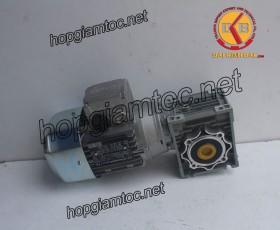Motor giảm tốc cốt âm 0.55kw 1/7.5