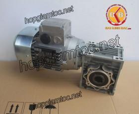 Motor giảm tốc cốt âm 0.75kw 1/10