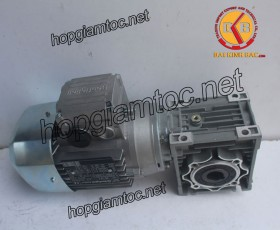 Motor giảm tốc cốt âm 0.75kw 1/25
