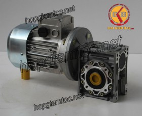 Motor giảm tốc cốt âm 0.75kw 1/60