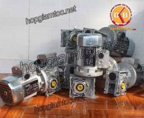 Motor giảm tốc cốt âm 1.1kw 1/100