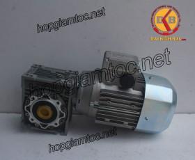 Motor giảm tốc cốt âm 1.5kw 1/10