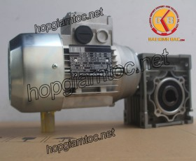 Motor giảm tốc cốt âm 1.5kw 1/100