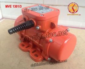 MOTOR RUNG OLI 1.3KW MVE 1301/3