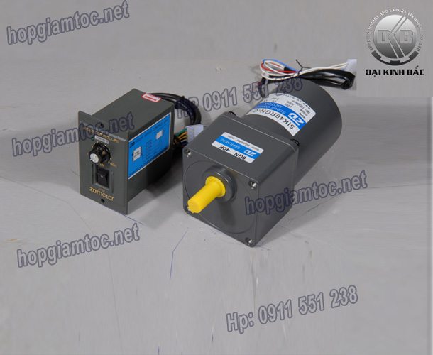 Speed control motor 40w 5IK40RGN-C