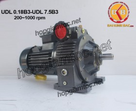 Variator speed 200~1000rpm