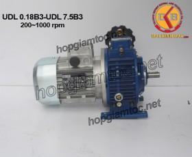 Variator UDL B3 200~1000rpm