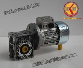 Video các loại motor giảm tốc cốt âm